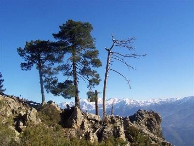 Fasten und Wandern im Gebirge von Korsika